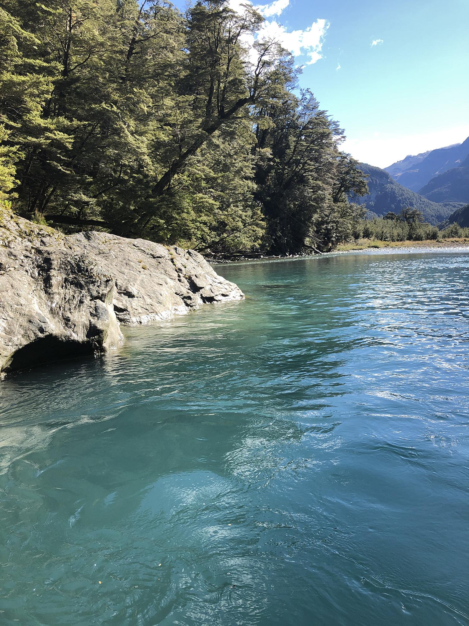 Te Waipounamu - dart river jet boat tour